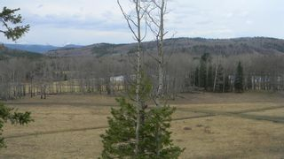 Photo 5: Corner of 178 Ave & 336 St W: Rural Foothills County Land for sale : MLS®# A1053038