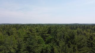 Photo 2: Lot Highway 203 in Shelburne: 407-Shelburne County Vacant Land for sale (South Shore)  : MLS®# 202114248