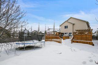 Photo 34: 82 Citadel Mesa Close NW in Calgary: Citadel Detached for sale : MLS®# A1073276