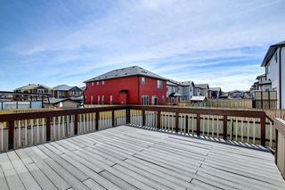 Photo 13: 312 SADDLEMONT Boulevard NE in Calgary: Saddle Ridge Detached for sale : MLS®# C4299986