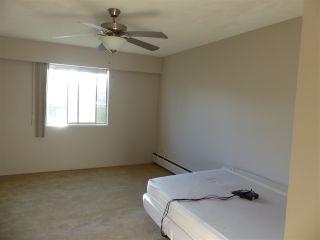 """Photo 9: 210 11806 88 Avenue in Delta: Annieville Condo for sale in """"Sungod Villa"""" (N. Delta)  : MLS®# R2568999"""