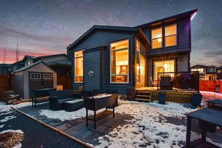 Photo 41: 34 Walden Park SE in Calgary: Walden Residential for sale : MLS®# A1056259