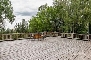 Photo 5: 74 WILDWOOD Drive SW in Calgary: Wildwood Detached for sale : MLS®# A1071436