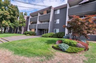 Photo 3: 210 377 Dogwood St in : CR Campbell River Central Condo for sale (Campbell River)  : MLS®# 886108
