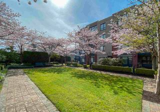 """Photo 29: 202 538 W 45TH Avenue in Vancouver: Oakridge VW Condo for sale in """"The Hemingway"""" (Vancouver West)  : MLS®# R2562655"""