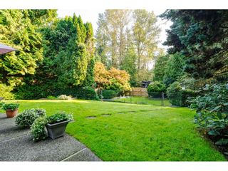 """Photo 32: 3852 196 Street in Langley: Brookswood Langley House for sale in """"Brookswood"""" : MLS®# R2506766"""