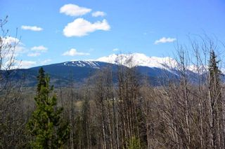 Photo 3: 200 LAIDLAW Road in Smithers: Smithers - Rural House for sale (Smithers And Area (Zone 54))  : MLS®# R2453029