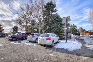 Photo 29: 305 40 Glenbrook Crescent: Cochrane Apartment for sale : MLS®# A1052145
