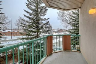Photo 25: 206 200 Lincoln Way SW in Calgary: Lincoln Park Apartment for sale : MLS®# A1064438