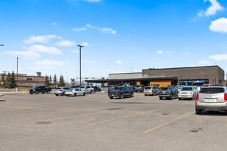 Photo 43: 296 Mt. Brewster Circle SE in Calgary: McKenzie Lake Detached for sale : MLS®# A1118914