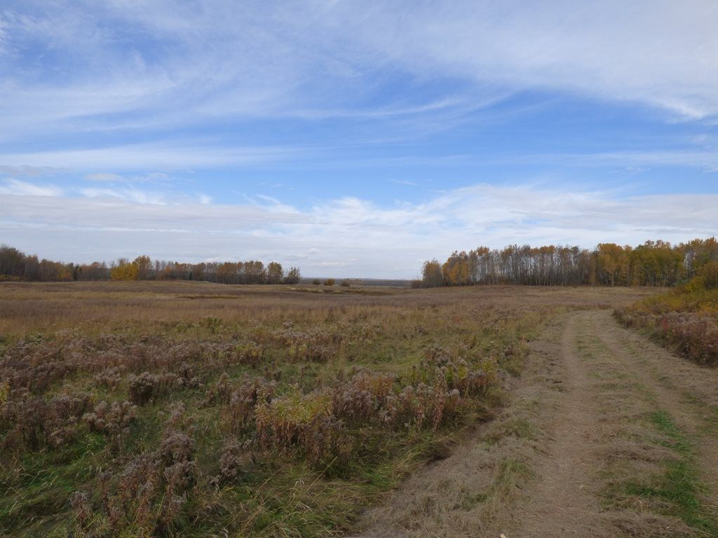 Photo 28: Photos: N1/2 SE19-57-1-W5: Rural Barrhead County Rural Land/Vacant Lot for sale : MLS®# E4217154
