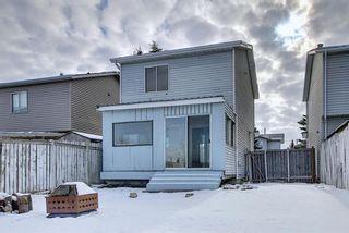 Photo 11: 109 Falmere Way NE in Calgary: Falconridge Detached for sale : MLS®# A1096389