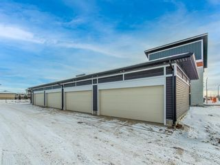 Photo 24: 108 Skyview Parade NE in Calgary: Skyview Ranch Row/Townhouse for sale : MLS®# A1065151