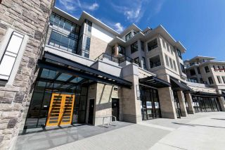 """Photo 1: 308 3220 CONNAUGHT Crescent in North Vancouver: Edgemont Condo for sale in """"The Connaught"""" : MLS®# R2405585"""