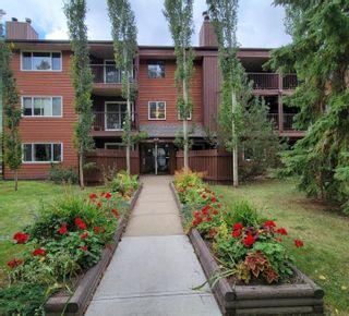 Photo 35: 206 10826 113 Street NW in Edmonton: Zone 08 Condo for sale : MLS®# E4264164