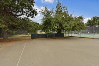 Photo 51: 2536 ASQUITH St in : Vi Oaklands House for sale (Victoria)  : MLS®# 883783