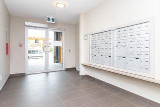 Photo 4: 109 3333 Glasgow Ave in Saanich: SE Quadra Condo for sale (Saanich East)  : MLS®# 885958