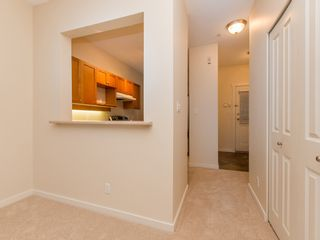 """Photo 6: 245 15 SIXTH Avenue in New Westminster: GlenBrooke North Townhouse for sale in """"CROFTON"""" : MLS®# R2074537"""