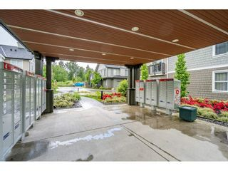 """Photo 28: 45 8050 204 Street in Langley: Willoughby Heights Townhouse for sale in """"Ashbury & Oak South"""" : MLS®# R2457635"""