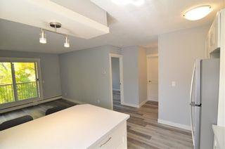 Photo 9: 403 828 4A Street NE in Calgary: Renfrew Apartment for sale : MLS®# C4205674