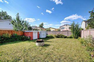 Photo 45: 80 Aberfoyle Close NE in Calgary: Abbeydale Detached for sale : MLS®# A1137613