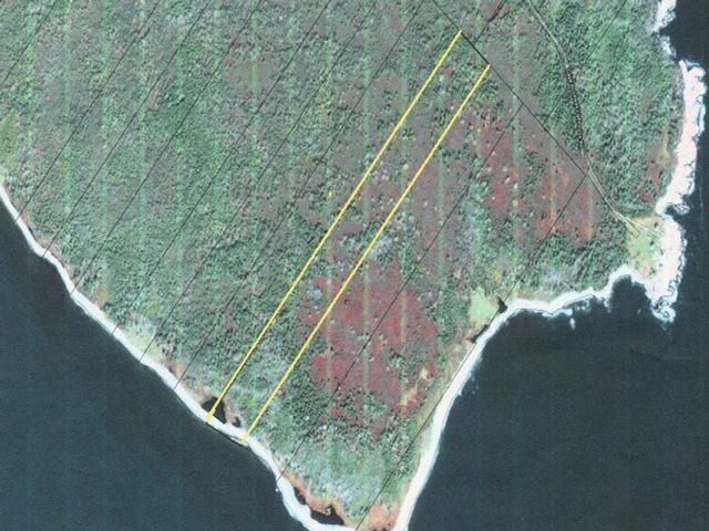 Main Photo: Lot 17 McNutts Island Road in McNutts Island: 407-Shelburne County Vacant Land for sale (South Shore)  : MLS®# 202119427