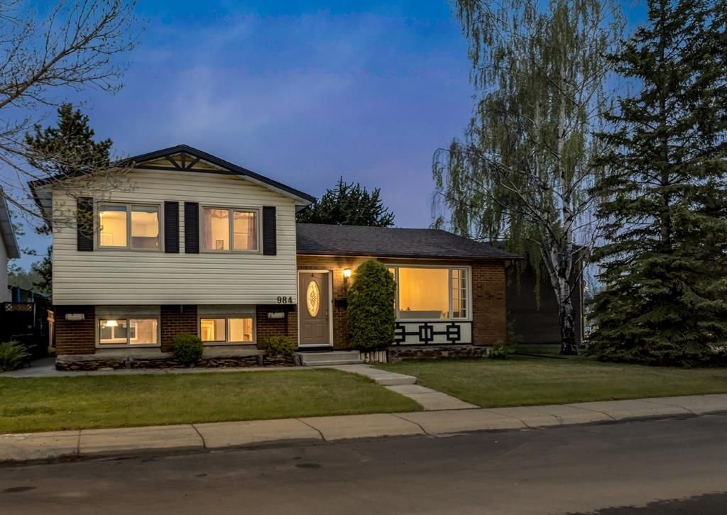 Main Photo: 984 RUNDLECAIRN Way NE in Calgary: Rundle Detached for sale : MLS®# A1112910