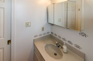 Photo 35: 7903 118A STREET in Delta: Scottsdale House for sale (N. Delta)  : MLS®# R2484516
