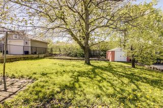 Photo 28: 47 Deevale Road in Toronto: Downsview-Roding-CFB House (Bungalow) for sale (Toronto W05)  : MLS®# W4458656