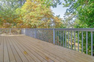 Photo 50: 1099 Jasmine Ave in : SW Strawberry Vale House for sale (Saanich West)  : MLS®# 883448