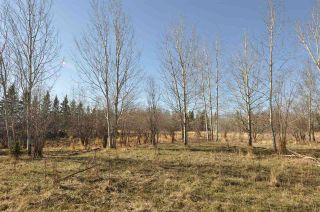 Photo 10: 10 57126 Range Road 12: Rural Barrhead County Rural Land/Vacant Lot for sale : MLS®# E4241768