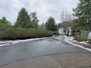 """Photo 14: 221 13624 67 Avenue in Surrey: East Newton Townhouse for sale in """"Hyland  Creek  Estates"""" : MLS®# R2429636"""