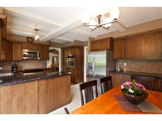 Photo 16: 15146 HARRIS Road in Pitt Meadows: North Meadows House for sale : MLS®# V899524