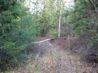 Photo 7: Lot 1 Trans Canada Hwy: Sorrento Land Only for sale (Shuswap)  : MLS®# 10171991