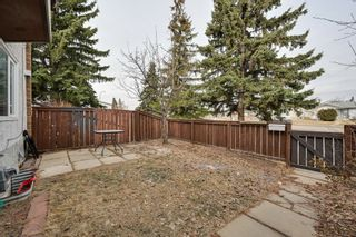 Photo 9: #3, 8115 144 Ave NW: Edmonton Townhouse for sale : MLS®# E4235047