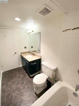 Photo 14: 402 1571 Mortimer St in VICTORIA: SE Cedar Hill Condo for sale (Saanich East)  : MLS®# 837902