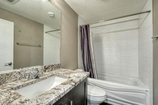 Photo 41: 79 Rundlefield Close NE in Calgary: Rundle Detached for sale : MLS®# A1040501