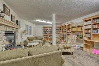 Photo 30: 3117 6818 Pinecliff Grove NE in Calgary: Pineridge Apartment for sale : MLS®# A1069420