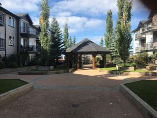 Photo 17: 425 1727 54 Street SE in Calgary: Penbrooke Meadows Apartment for sale : MLS®# A1097716