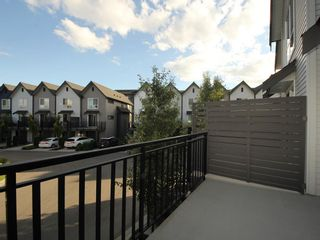 """Photo 13: 16 2325 RANGER Lane in Port Coquitlam: Riverwood Townhouse for sale in """"Fremont Blue"""" : MLS®# R2272901"""
