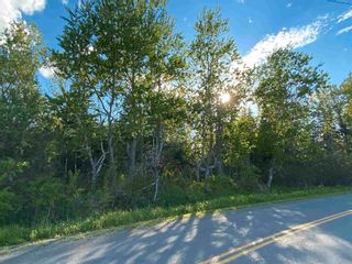 Photo 12: 16 acres Caribou Island Road in Caribou Island: 108-Rural Pictou County Vacant Land for sale (Northern Region)  : MLS®# 202104068