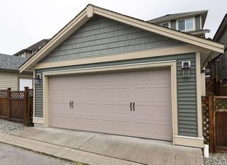Photo 19: 10559 ROBERTSON STREET in Maple Ridge: Albion House for sale : MLS®# R2252110