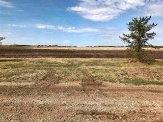 Photo 7: RR 255 & HWY 37: Rural Sturgeon County Rural Land/Vacant Lot for sale : MLS®# E4244134