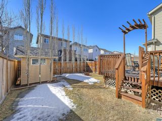 Photo 34: 148 Copperfield Common SE in Calgary: Copperfield Detached for sale : MLS®# A1079800