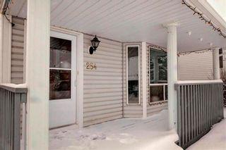 Photo 36: 254 SARATOGA Close NE in Calgary: Monterey Park House for sale : MLS®# C4165371