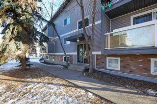 Photo 7: 103 8527 82 Avenue in Edmonton: Zone 17 Condo for sale : MLS®# E4224801