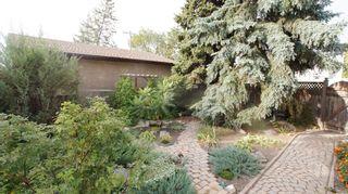 Photo 4: 317 Hazel Dell Avenue in Winnipeg: East Kildonan Residential for sale (North East Winnipeg)  : MLS®# 1211973