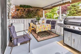 """Photo 40: 14271 67 Avenue in Surrey: East Newton House for sale in """"HYLAND"""" : MLS®# R2581926"""