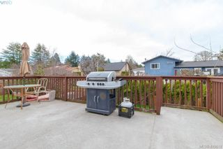 Photo 33: 4389 Columbia Dr in VICTORIA: SE Gordon Head House for sale (Saanich East)  : MLS®# 813897