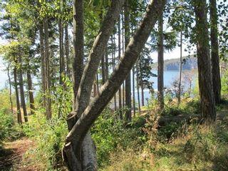 "Photo 3: LOT 74 ALLEN CRESCENT in Pender Harbour: Pender Harbour Egmont Land for sale in ""DANIEL POINT"" (Sunshine Coast)  : MLS®# R2091829"